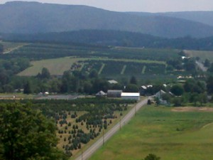Aerial View of the Pinecrest Farms